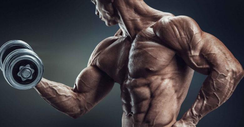 تمرين_عضلات_الباى_والترتى